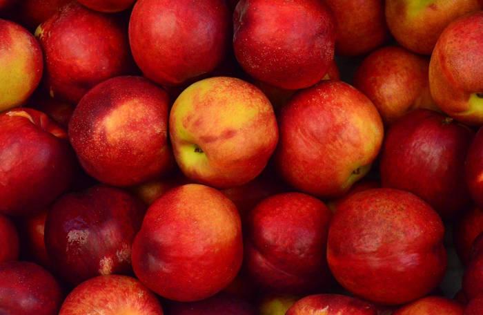 Konfitura z jabłek – jak ją wykonać?