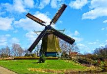 O jakie ulgi podatkowe warto się starać, dokonując rozliczenia z Holandii?